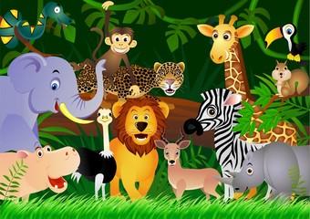 Crtić o divljim životinjama