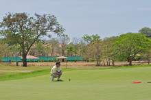 Golfer Lining Up A Shot On The...