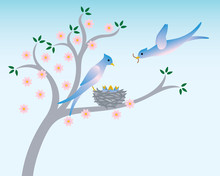 Birds With Nest In Spring