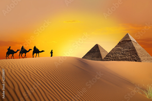 Tuinposter Egypte Pyramid, camel and sunset