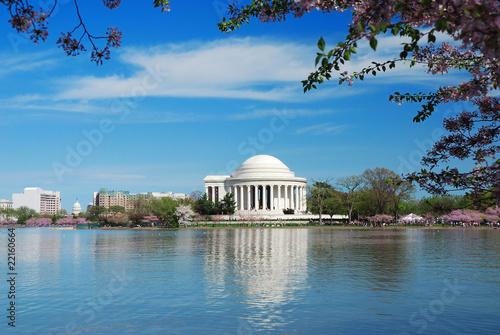Foto op Plexiglas Historisch geb. Cherry Blossom in Washington DC