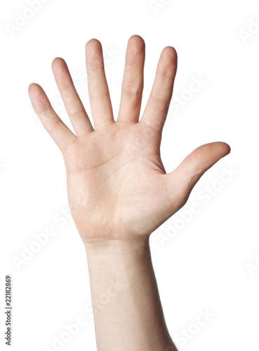 Foto  6 fingers