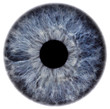 canvas print picture - eye2