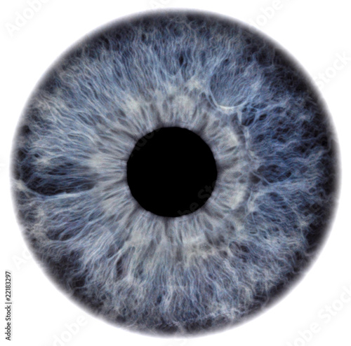 Canvas Prints Iris eye2