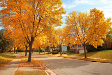 Residential Neighborhood In Autumn