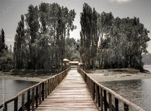 puente hacia isla con árboles en Chiloé