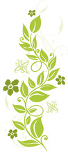 Blumen, Blüten, Ranke, Flowers, Floral, Filigran, Grün