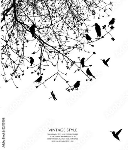 Photo sur Toile Oiseaux sur arbre tree and bird