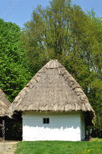 Photo  Old house with roof from straw in wood