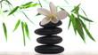 Zen rocks and frangipani against bamboo background - HD