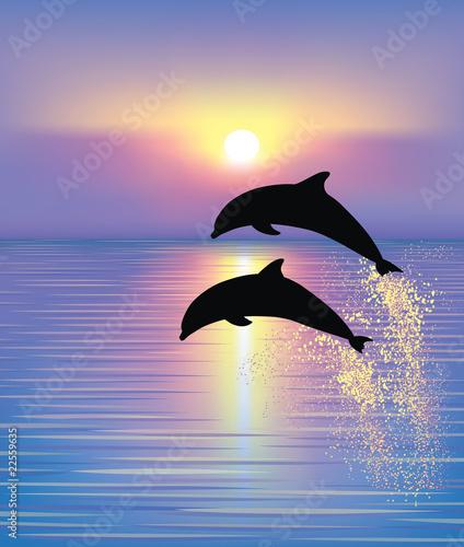 Poster Dolfijnen Dolphins.