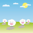 Sheeps on the field vector illustration cartoon