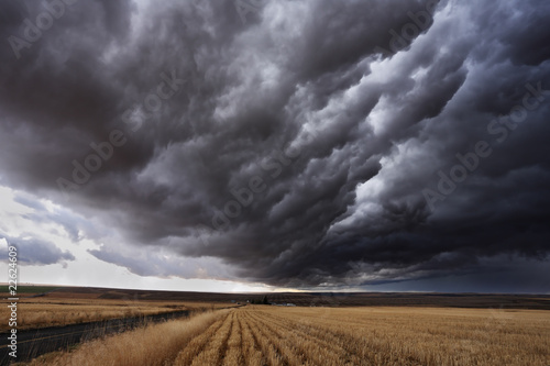 Photo sur Toile Tempete The autumn storm