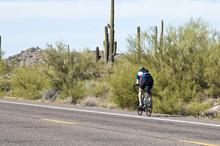 Biking In The Desert