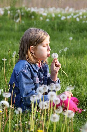 Dziewczynka z dmuchawcem na łące - 22725092