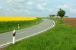 canvas print picture - road serpentine