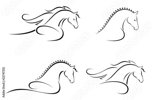 Fototapeta Horse head obraz