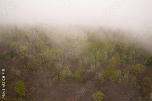 Fotografia  Nebelschwarden II