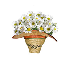 Flowers In A Hat On A White Ba...