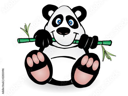 Wall Murals Bears Panda