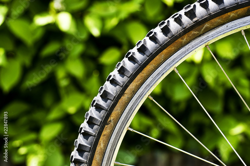 Mountain bike tyre #22847893