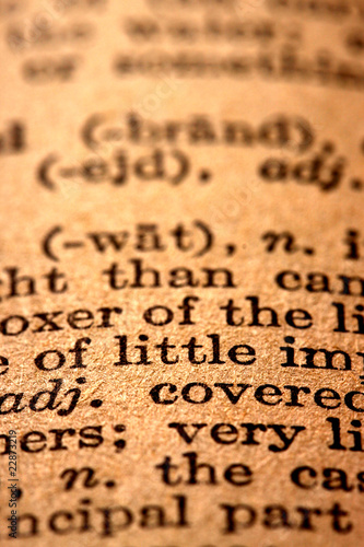 Fototapety, obrazy: Dictionary text