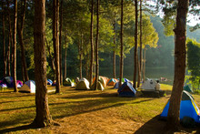 Camping Park