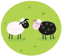 Black And White Sheep. VECTOR ...