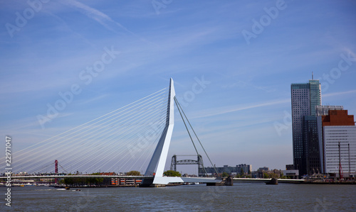 Recess Fitting Swan erasmus bridge in the centrer of rotterdam