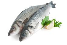 Due Branzini - Two Sea Bass
