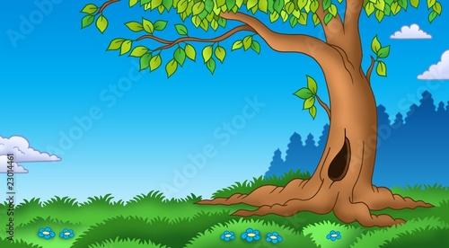 Foto op Aluminium Blauw Leafy tree in grassy landscape