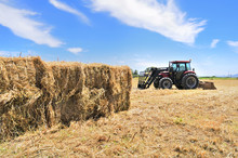 Hay Stack And Tractor In A Field