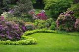 Fototapeta Kwiaty - Kompozycja ogrodowa