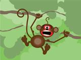 Małpka w drzewach