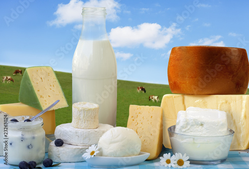 Fotografie, Obraz  Foodstill with Bio dairy products- cheese and milk