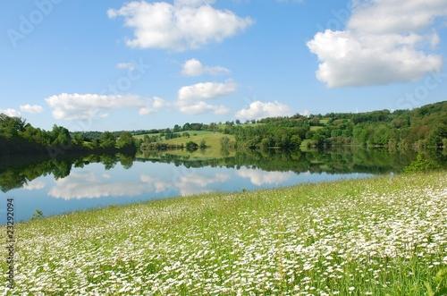 Papiers peints Marguerites Lac, champ de marguerites