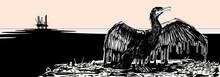 Oiled Cormorant