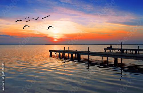 Tuinposter Pier las aves del lago