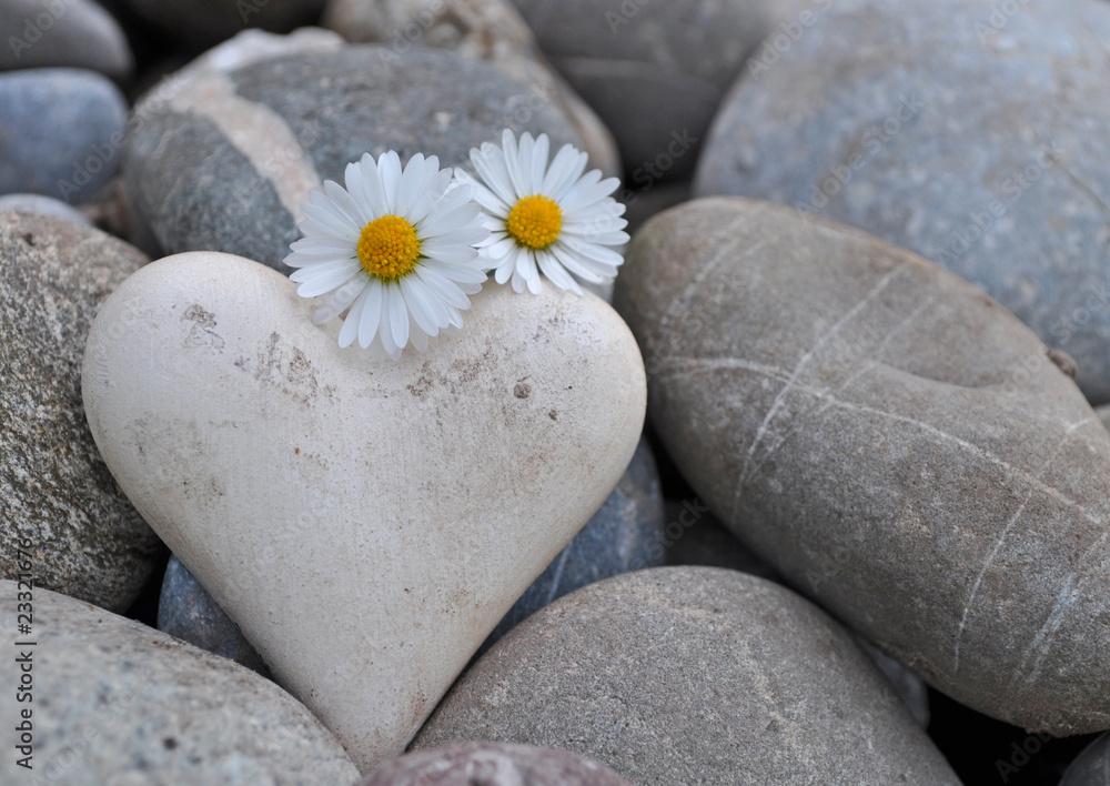 Doppelrollo mit Motiv - Herz auf Steinen mit Gänseblümchen