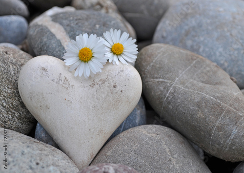 Akustikstoff - Herz auf Steinen mit Gänseblümchen