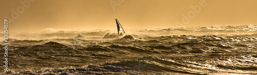 Fotografie, Obraz  Windsurfing in Hawaii