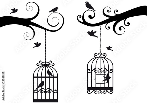 Fotoposter Vogels in kooien bircage and birds, vector