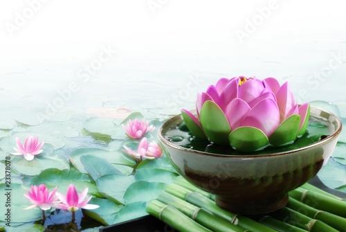 Garden Poster Lotus flower Spa still life
