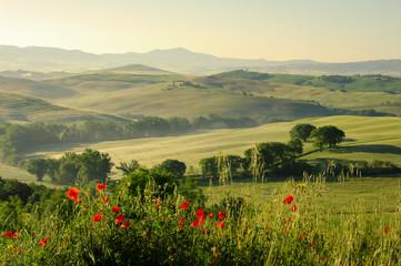 Panel Szklany Toskana Huegel - Tuscany hills 18