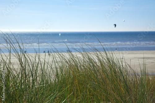 Keuken foto achterwand Noordzee strandhafer an der nordsee