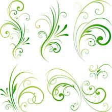 Floral Decorative Swirls