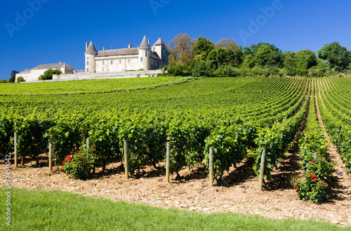 Poster Wijngaard Chateau de Rully with vineyards, Burgundy, France