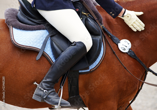 Photo sur Aluminium Equitation Reitsport Detail - Horse Woman