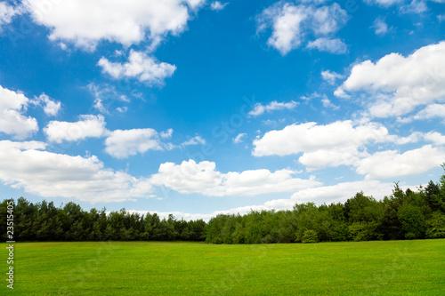 Foto op Plexiglas Weide, Moeras Beautiful green field and blue sky