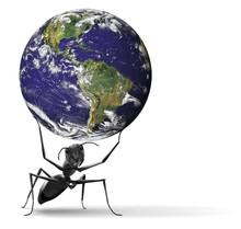 Small Ant Lifting Heavy Blue E...